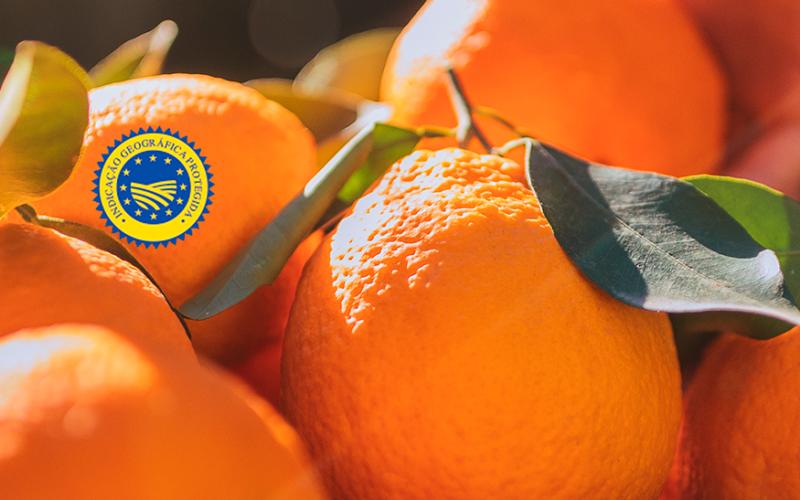 Operadores dão a provar laranja algarvia em voos, hóteis e feiras internacionais